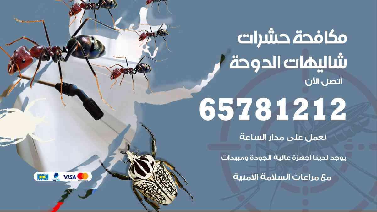 شركات مكافحة حشرات شاليهات الدوحة