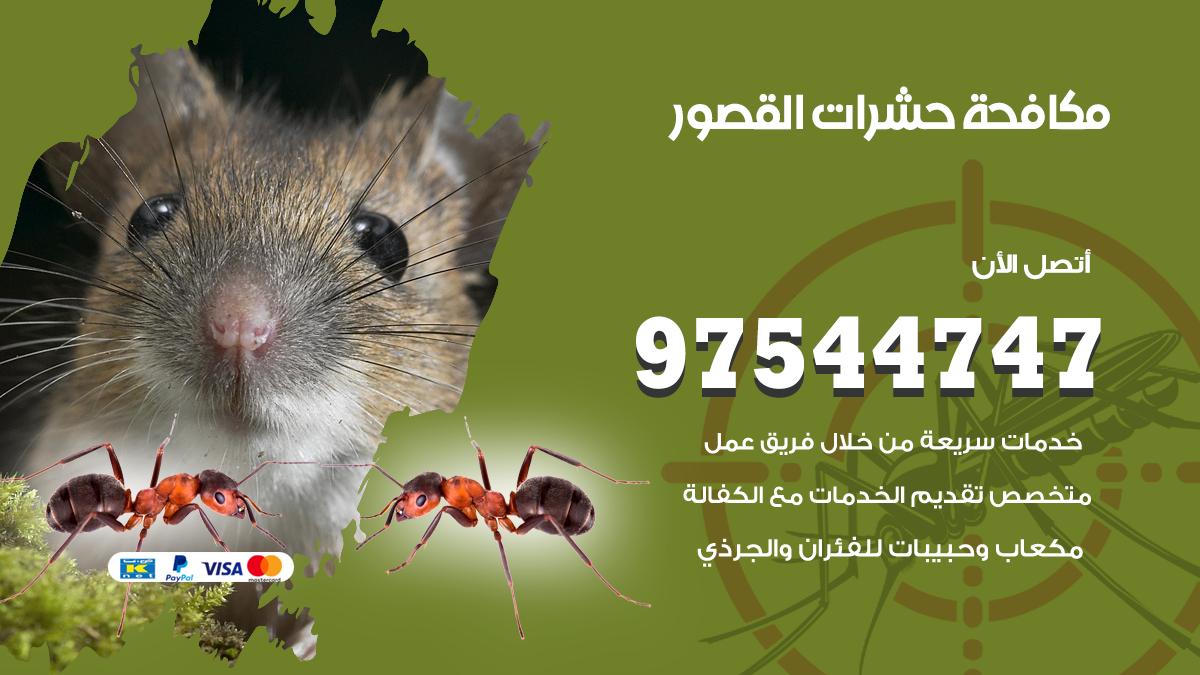 مكافحة حشرات وقوارض القصور