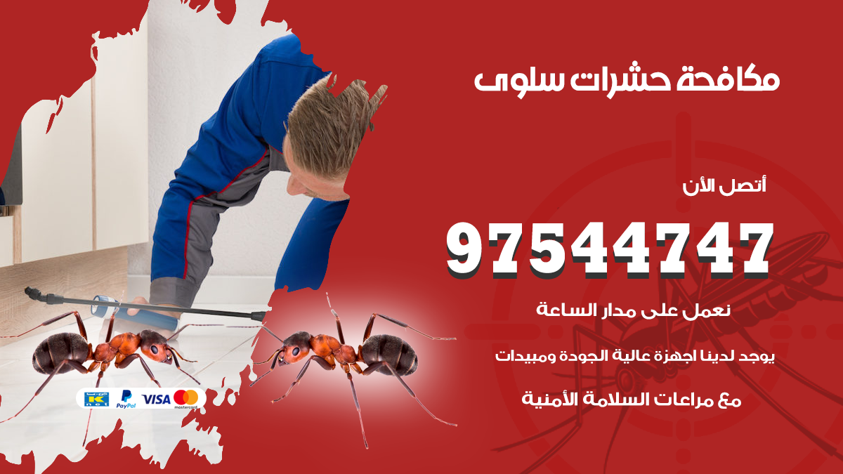 مكافحة حشرات وقوارض سلوى