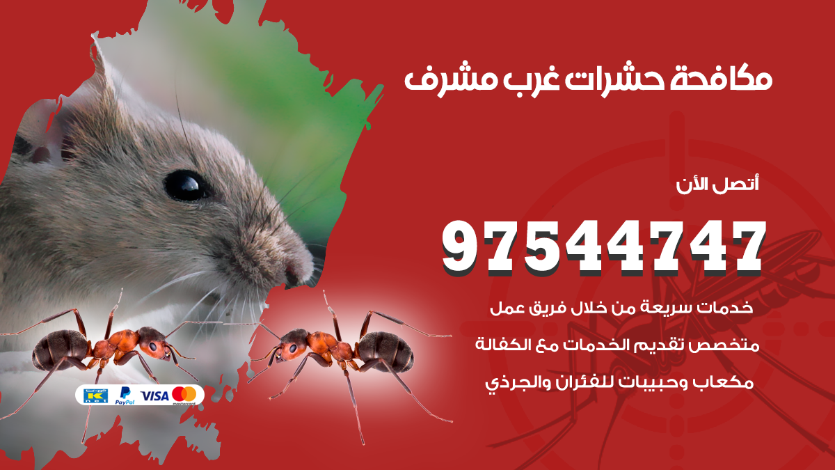 مكافحة حشرات وقوارض غرب مشرف